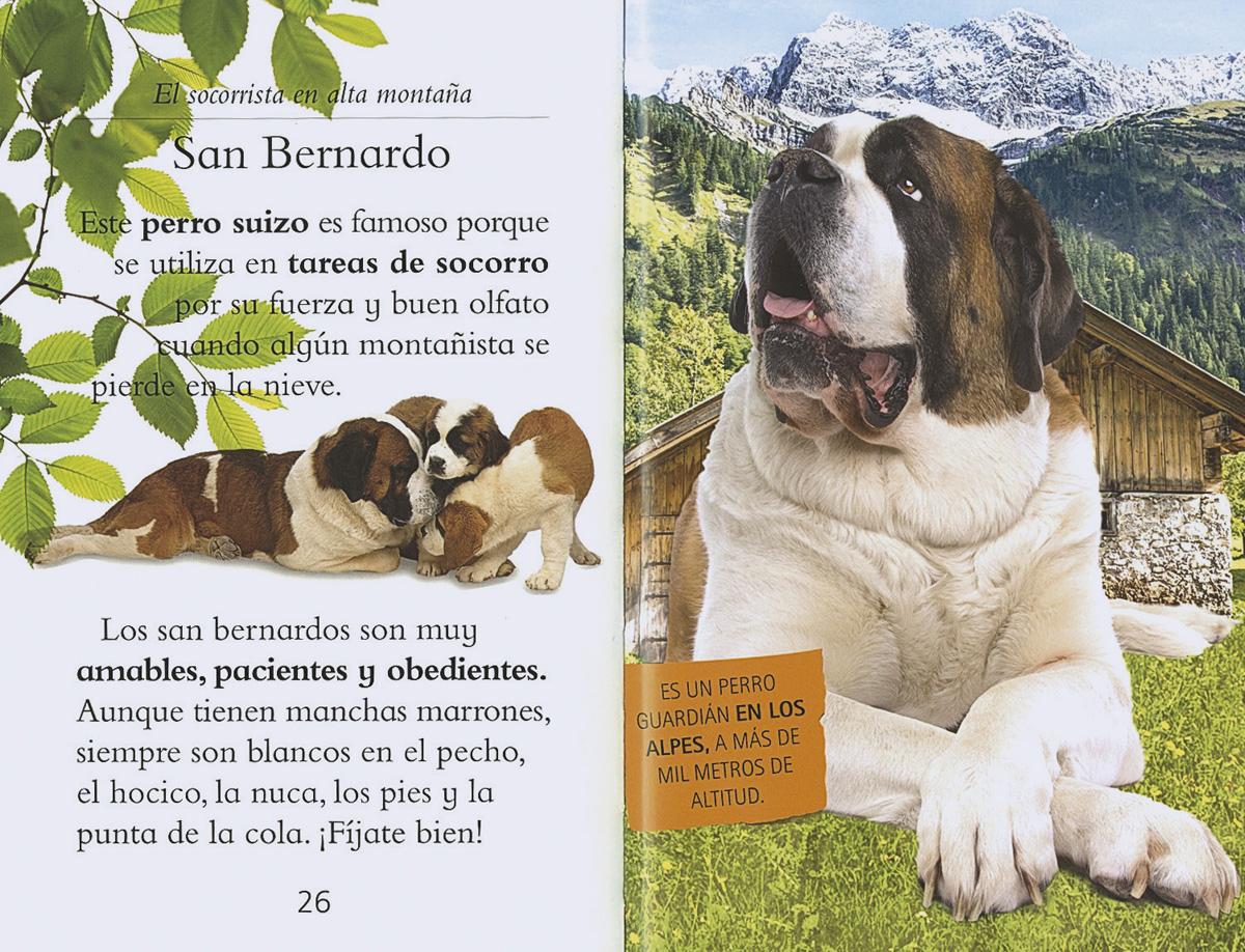 Nuestros amigos los perros | Leer con Susaeta